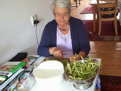 Huishoudelijke hulp Laverna: Huishoudelijke hulp
