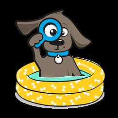 Afdekzeil hondenzwembad