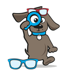 Hondenbril