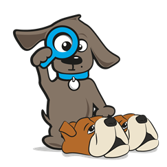 Pantoffels hond