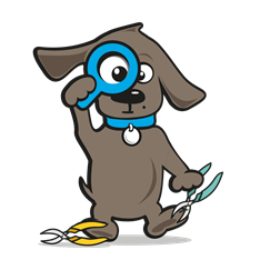 Nagelschaar hond