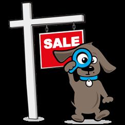 SALE (hondenartikelen tot €10)
